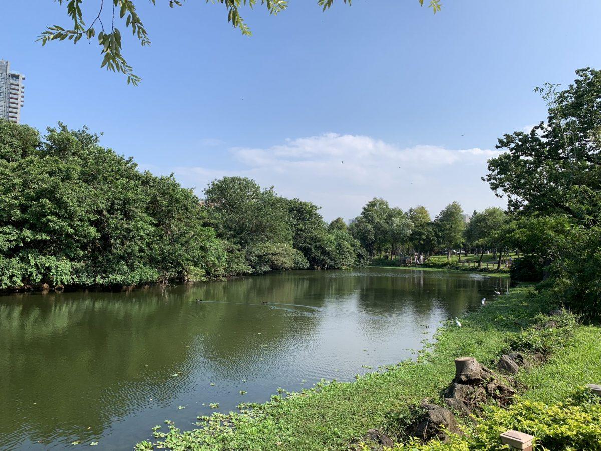 大安森林公園5