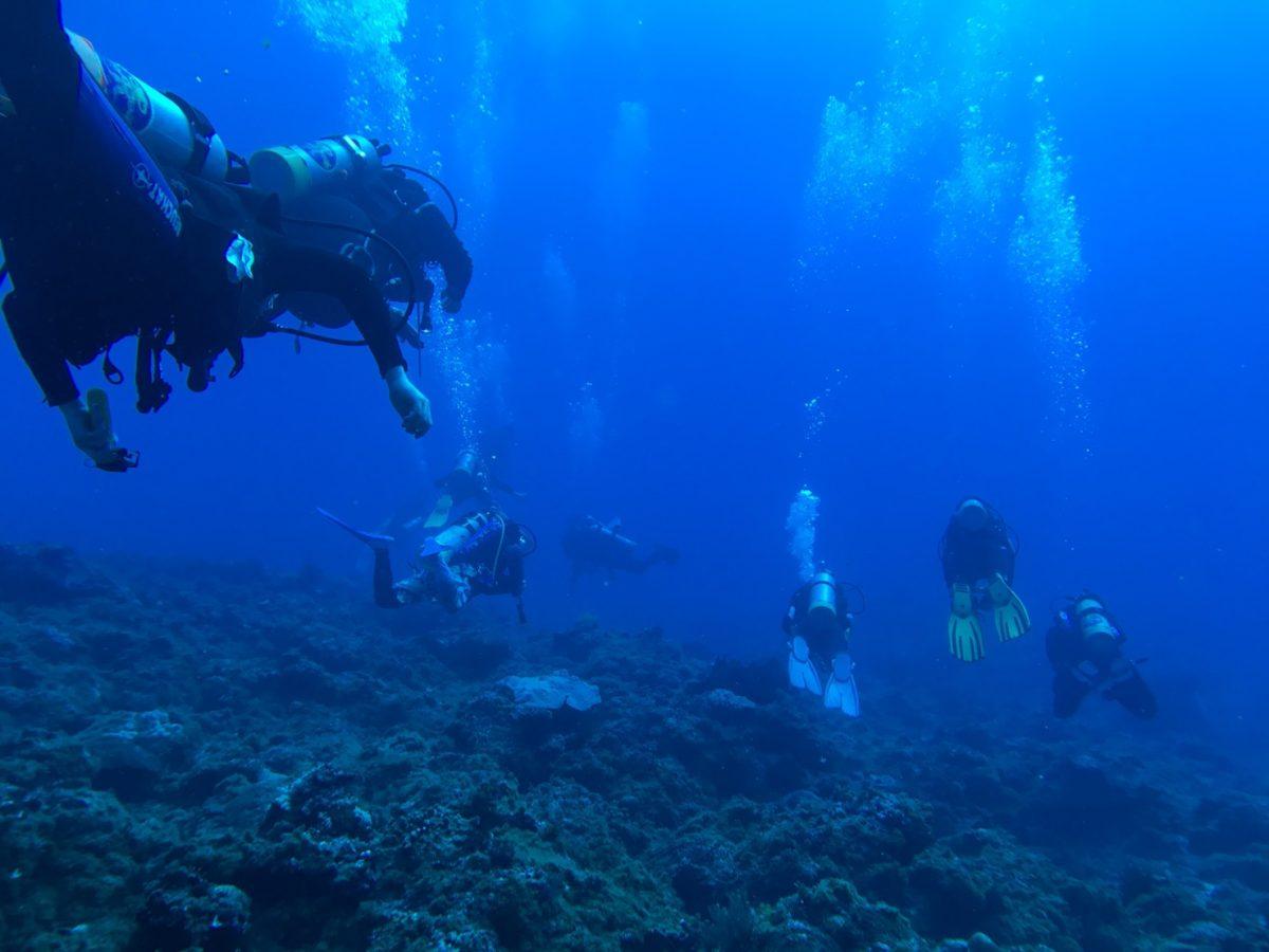 小琉球の海底